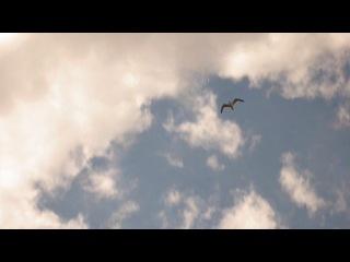 02,07,2013 турбо чайка